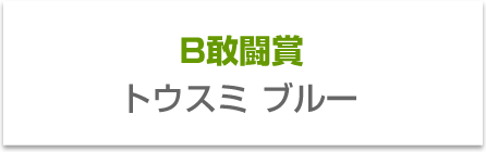 B敢闘賞 トウスミブルー