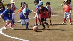 体育の日記念事業ミニサッカー大会(1,2年生の部)4